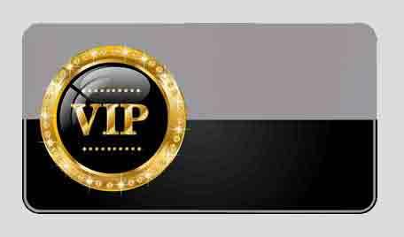 2. VIP Platinum Member